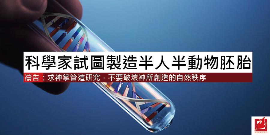 科學家試圖製造 半人半動物胚胎
