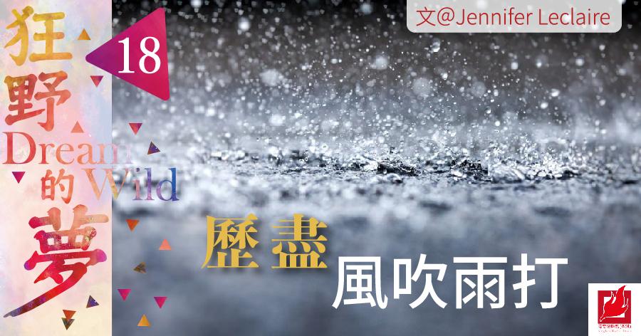 (18)歷盡風吹雨打 -【狂野的夢】專欄